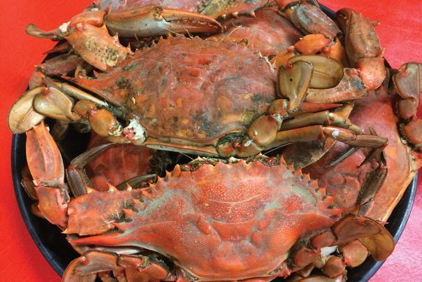 Crabs Seafood Palace