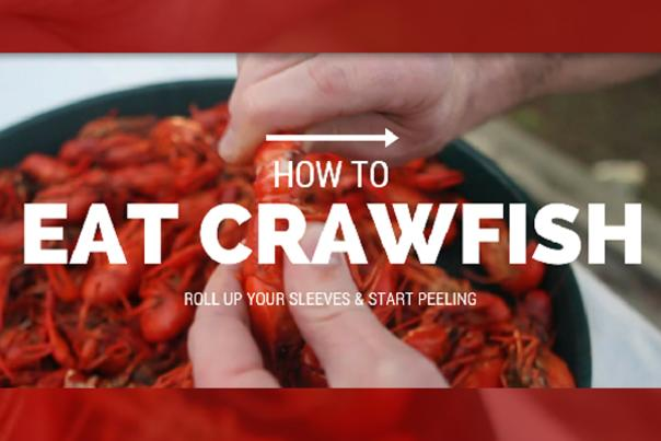 How to Eat Crawfish (Blog)