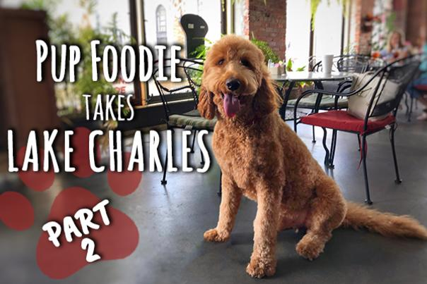 Pup Foodie Take Lake Charles: Part 2