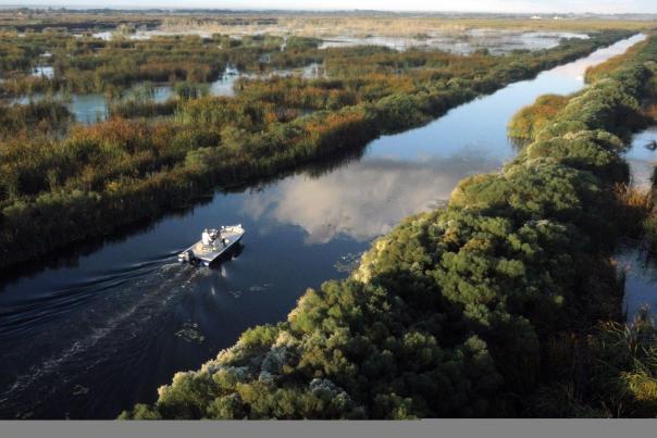 Boat navigates the Marsh