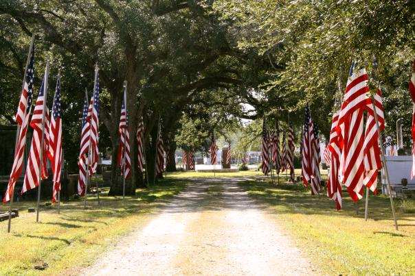 Avenue of Flags at Orange Grove/Graceland Cemetery
