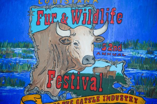 Fur & Wildlife Festival