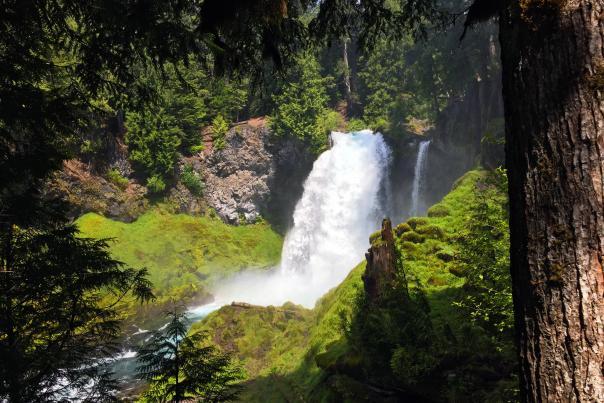 Sahalie Waterfall, McKenzie River by Sally McAleer