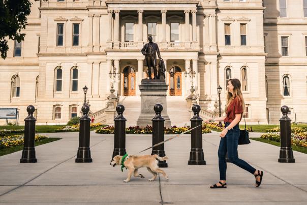 Dog Walk Capitol