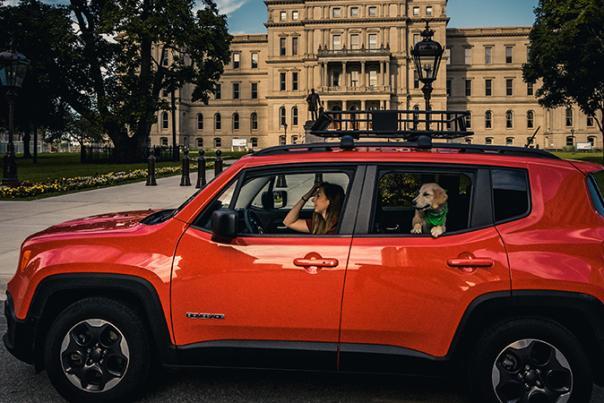 Dog - Car - Capital - Travel