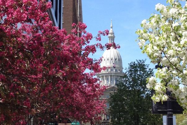 Spring Capitol
