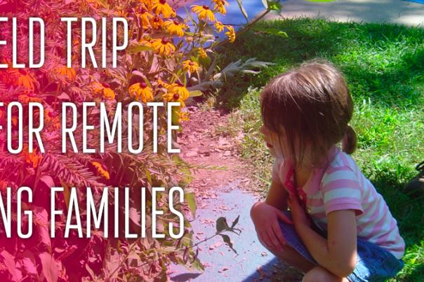 10+ Field Trip Ideas for Remote Learning Families