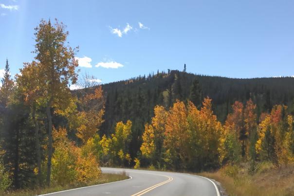 Sand Lake Road, USFS #3