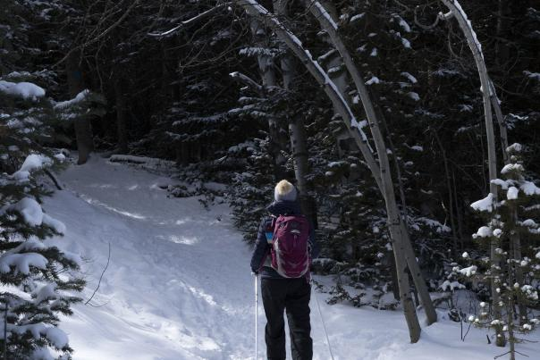 Snowshoeing in the Snowy Range, Possibly Corner Mountain
