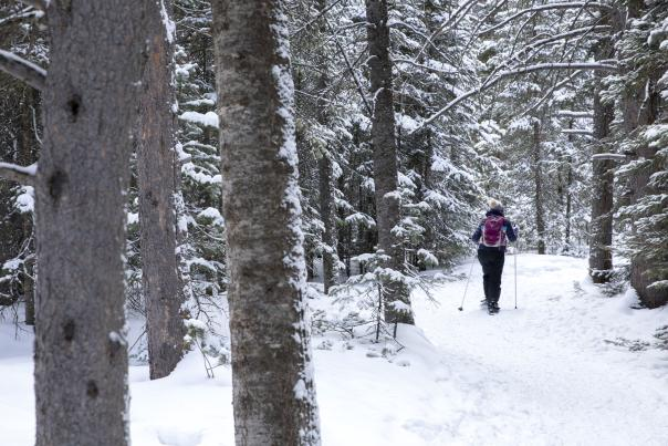 Snowshoeing in the Snowy Range of Wyoming