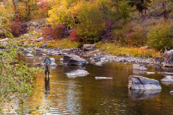 Fall Fly Fishing Wyoming
