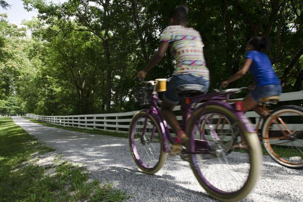 Bikes-on-Turnpike-at-Shaker-Village-medium