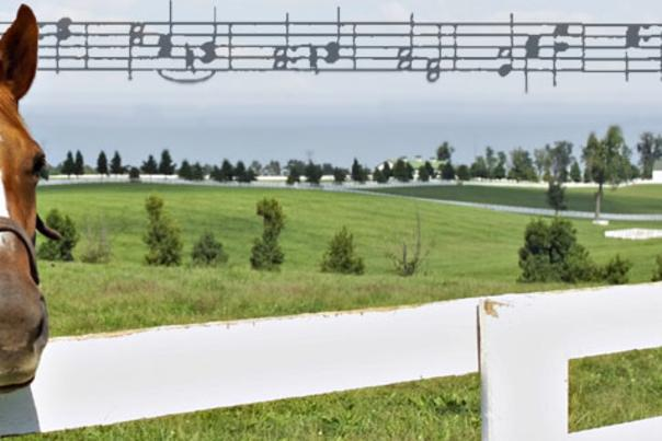 Bluegrass Music in the Bluegrass