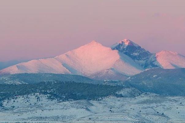 Pink Winter Longs