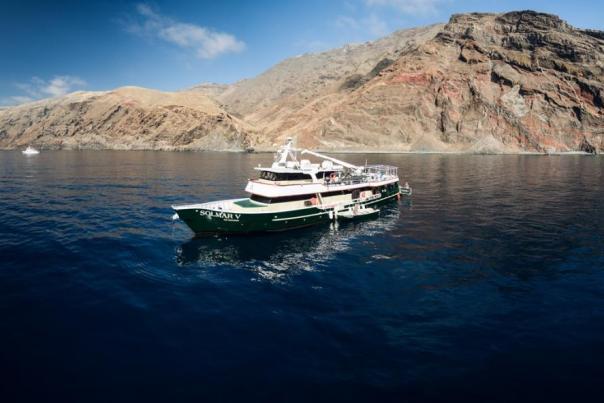 4 Emocionantes Aventuras Acuáticas en Los Cabos