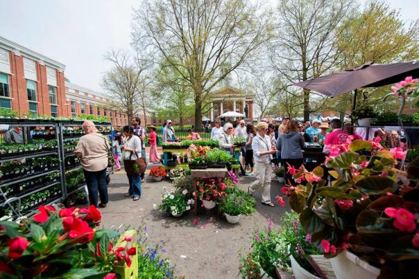 Leesburg Flower & Garden Show