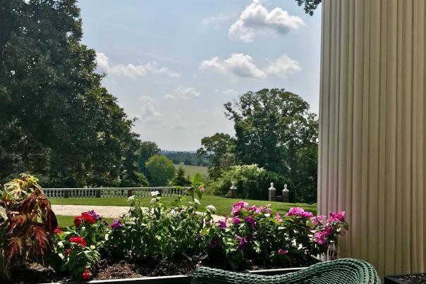 oatlands view