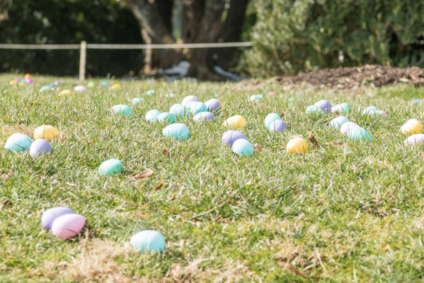 morven park easter eggs