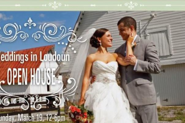 Weddings in Loudoun Blog Header
