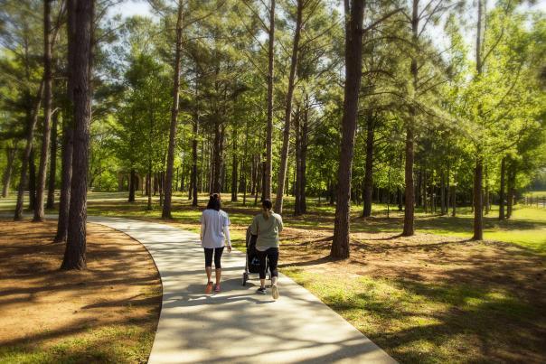 Amerson Park Trail