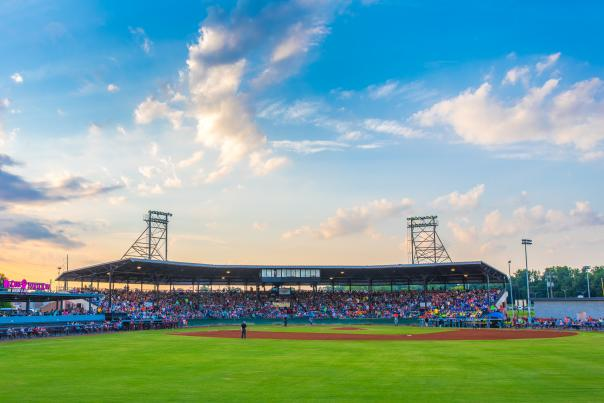 Luther Williams Field