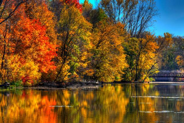 Elm creek fall colors