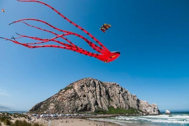 977_sized_kite_.jpg