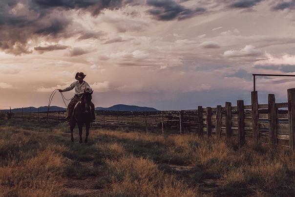 A Working Cowboy, New Mexico Magazine