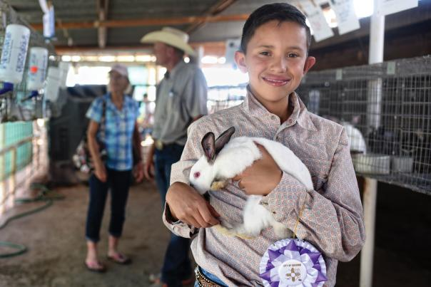 County fairs celebrate the skills of rural life.