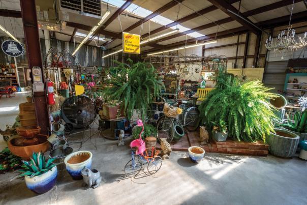 Traci's Greenhouse in Clovis