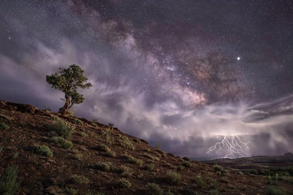 Wayne Suggs, The Wondrous Heavens