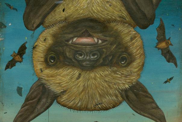 Bat Illustration