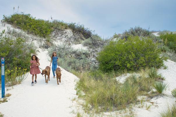 Family walking at White Sands National Park