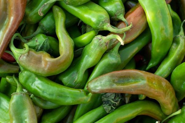 The Big Jim chile variety is notable for its size and heat, a statewide favorite for chiles rellenos, New Mexico Magazine