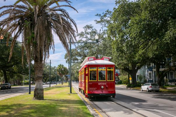 Carrollton Avenue Streetcar - Mid-City