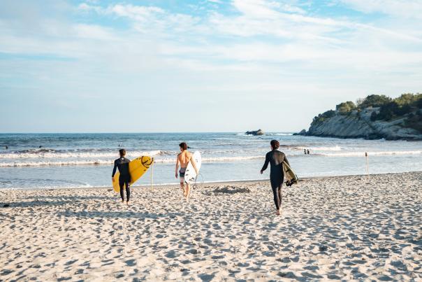 2019 Surfing Summer