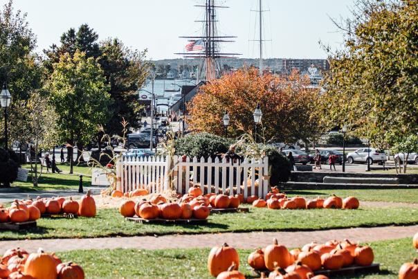 Fall Downtown Trinity Pumpkin Patch