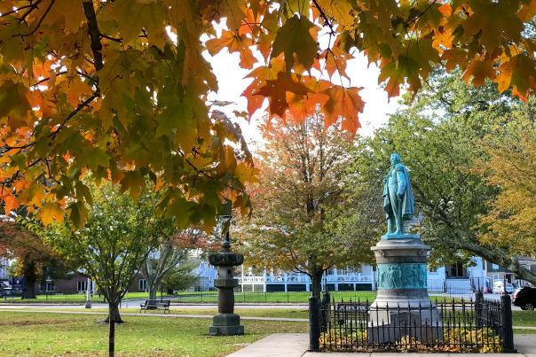 Touro Park Fall
