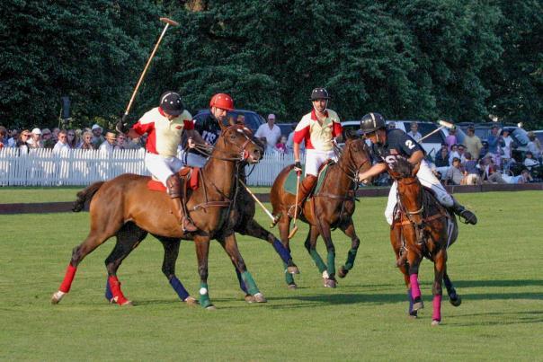 Riders playing polo in Newport RI