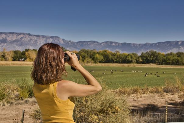 Rio Grande Nature Center in Albuquerque