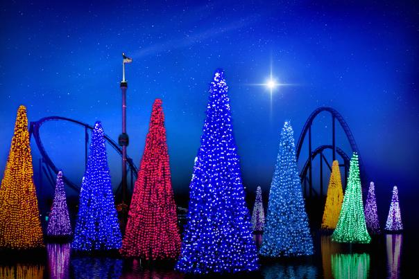 Sea of Trees at SeaWorld Orlando