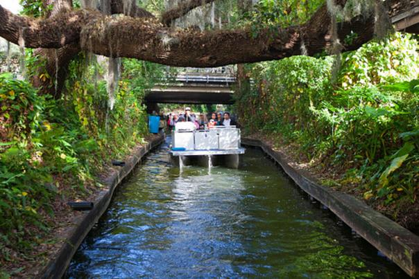 the boat steers through a canal on the Winter Park Scenic Boat Tour
