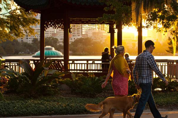 A couple walking their dog along Lake Eola with the fountain in the background