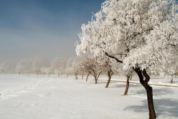 winterbig
