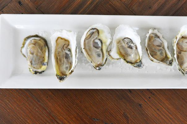oysters blue water grill