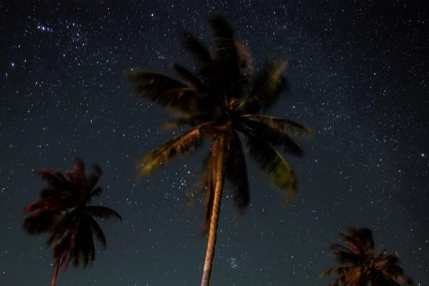 1920x1080 istock stargazing