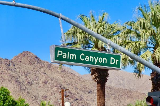 Green Palm Canyon Drive street sign with mountain and palm tree background.