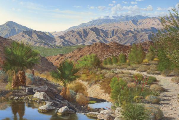 baxter palm springs landscape onyx11 1 web
