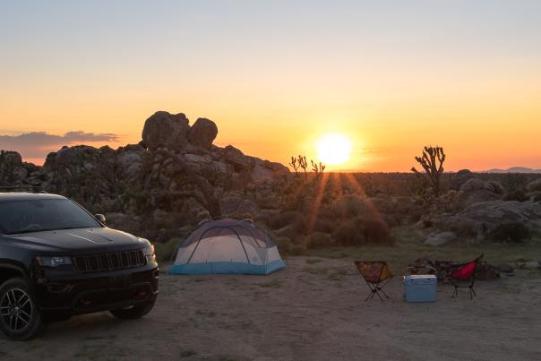 Car camping in the desert with Joshua Trees at sunset
