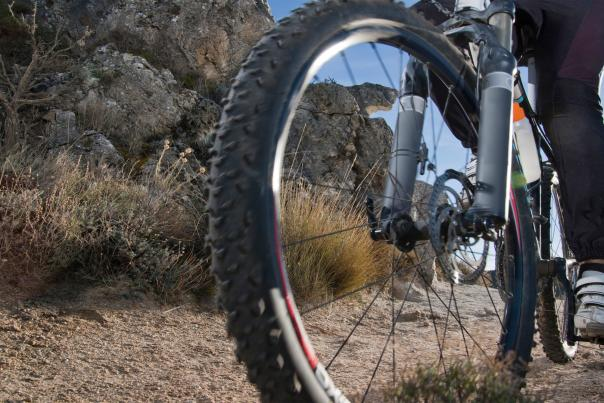 epic mountain biking trails featured web
